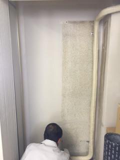 本所事務所 内壁の一部を塗りました
